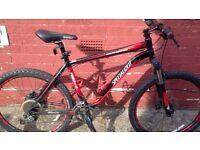 Specialized bike ( Stolen )