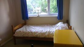 A single room for rent in a large house with gardens