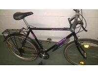 Trek bike and other bikes