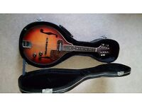 Electric Mandolin with hard case