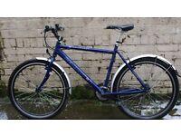 trailfinder bike