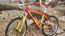 Klien rare retro 90's mountain bike £600 !! Bargain!!