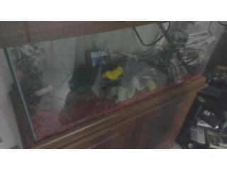Cracked 3 foot fish tank with cabinet, pump and extras.