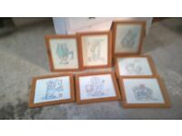 Framed Comical Cat Pictures