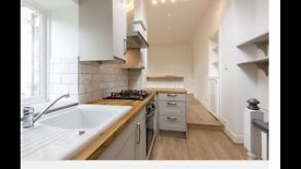 Stunning, stylish flat just been completely renovated !
