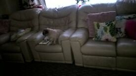 2seater and 2 single chairs cream leather
