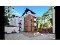 New Build En-Suite Double Room - New Beckenham