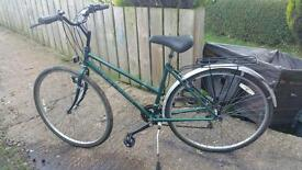 Ladies PIONEER road bike for sale