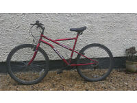 Second-hand mountain bike
