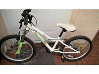 Bicycle moonstone 20