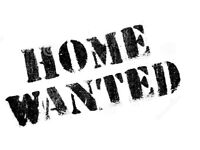 FLAT/HOUSE WANTED IN ASHFORD/KENT