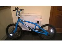 "Boys 20"" X Rated Spine BMX bike - blue - excellent condition"