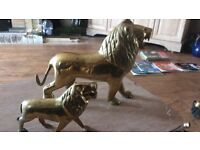 Solid brass lion ornament