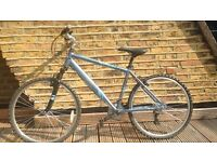 "Barracuda mountain bike. 18"" frame. Good condition with a just replaced, new back wheel."
