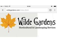 Maintenance Gardener required