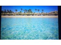 An all inclusive ticket to be accompanied in Hurghada Egypt.