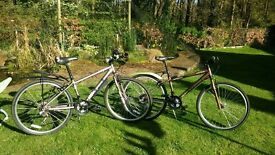 "2 x Junior 14"" bikes, excellent condition, Apollo Urban. £50 EACH, hardly used"