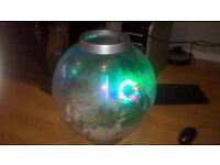 30 litre round fish tank