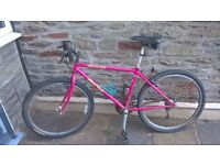 Classic Specialized Hardrock Mountain Bike- 1990 Retro