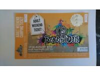 1 adult beautiful days ticket with car pass