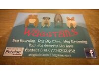 Waggtails Dog Boarding, Dog Day Care & Dog Grooming **24 Emergency** Broomhill, Bristol BS4 4RR