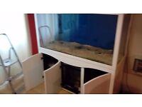 5ft 645 litre Aquarium