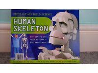 Game Human Skelton