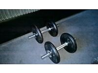 4 x 5kg York Cast Weights & a Set of Dumbells