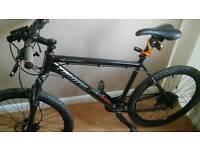 Carrera mens bike