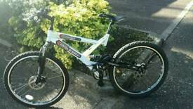 RALEIGH LITHIUM MOUNTAIN BIKE