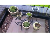 Metal Penny Farthing style 5 plant pot holder