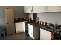 Stunning 2 bedroom apartment wanting 3 bedroom house