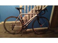 Wilier Triestian Road Bike