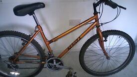 Integra Bike