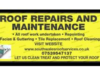 Swansea Roof Repairs & Maintenance Building Services and Groundwork