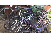 jOBLOT BICYCLES MOUNTAIN BIKES APPROX 20+