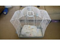 Bird Cage with Free Canary seed