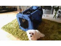 Perfect condition blue Pet Dog / Cat Carrier