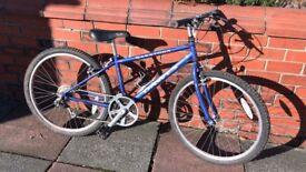 Boys Dawes Saratoga mountain bike
