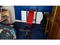 Pro Power Weight Bench With Leg Extension
