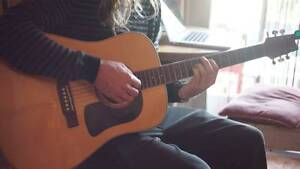 Washburn D-10SK Acoustic Guitar Pascoe Vale South Moreland Area Preview