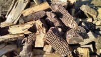Firewood blocking and chainsaw services
