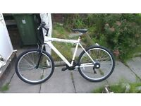 2 Bikes in great condition selling for £100
