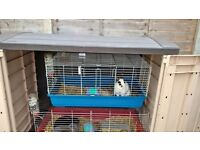 for sale a indoor rabbit cage blue in fareham