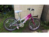 "Girls pink and silver bike 20"" wheels"