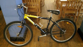 17' Inches Frame Adult Bike for Sale