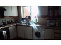 Double room in friendly shared house - great position for Addenbrookes and the city