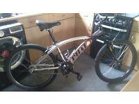 "Phat bikes alloy California beach cruiser 26""wheels 7speed"