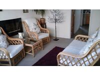High Quality Cane Furniture
