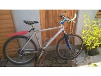marin bike for sale